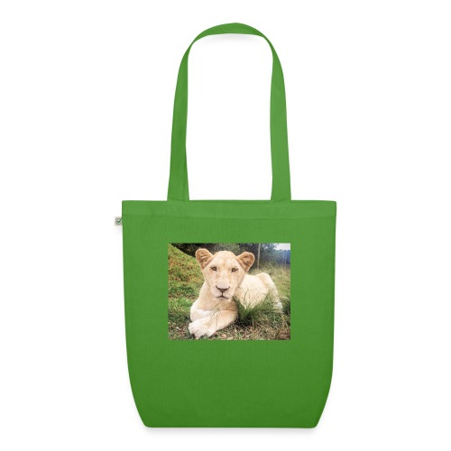 10536 2Cmoomba groot - EarthPositive Tote Bag
