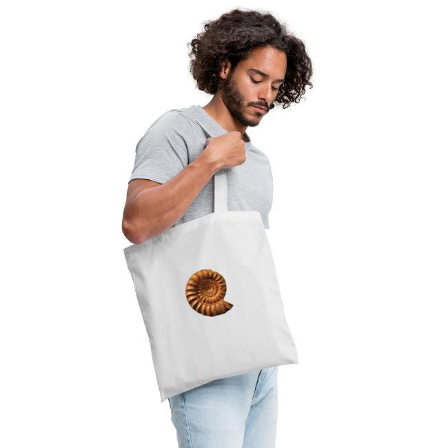 Ammonite Slat