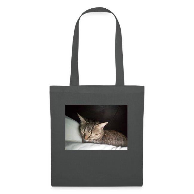 Katzen Liebhaber Und Leidenschaft