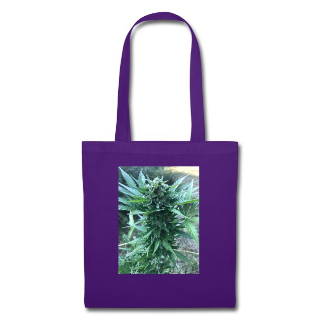 Bud Cannabis
