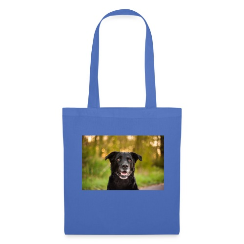 leikbaer - Tote Bag
