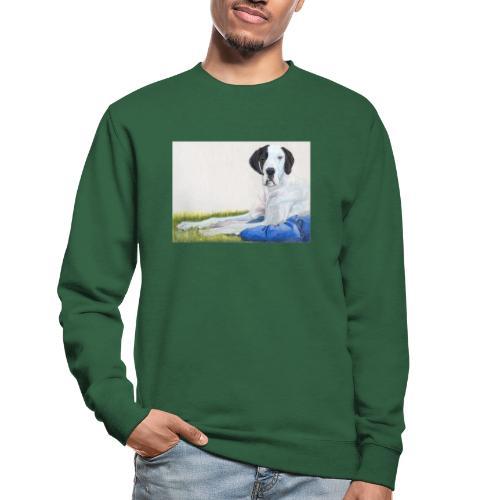 Grand danios harlequin - Unisex sweater