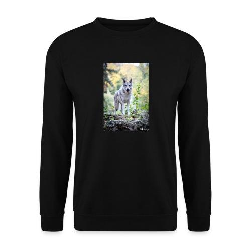 La Tanière des Chiens-Loups - Sweat-shirt Homme