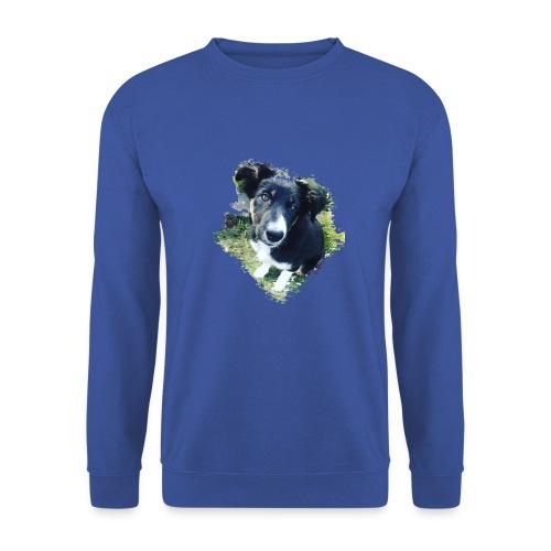 colliegermanshepherdpup - Men's Sweatshirt