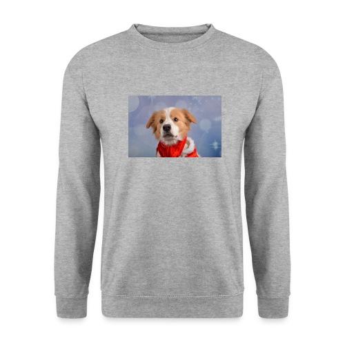 DSC_2040-jpg - Mannen sweater