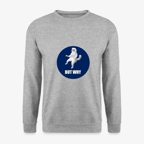BUTWHY - Men's Sweatshirt