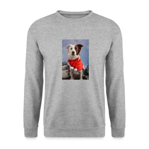 DSC_2058-jpg - Mannen sweater