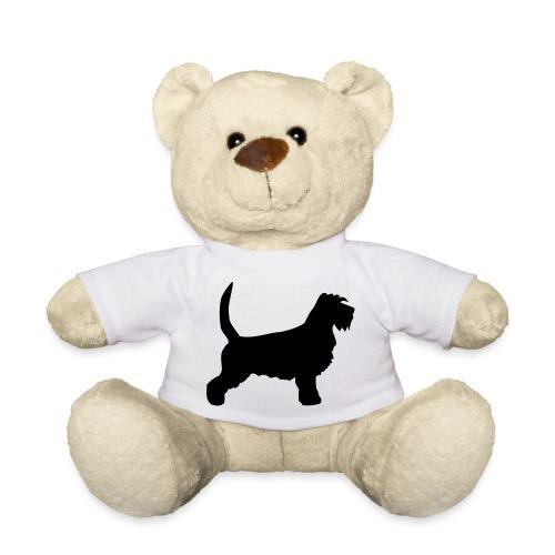 Basset Griffon - Teddy