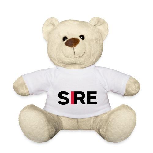 POS SIREPMS - Teddy
