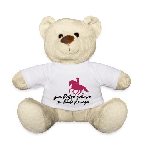 Zum Reiten geboren - zur Schule gezwungen - Teddy