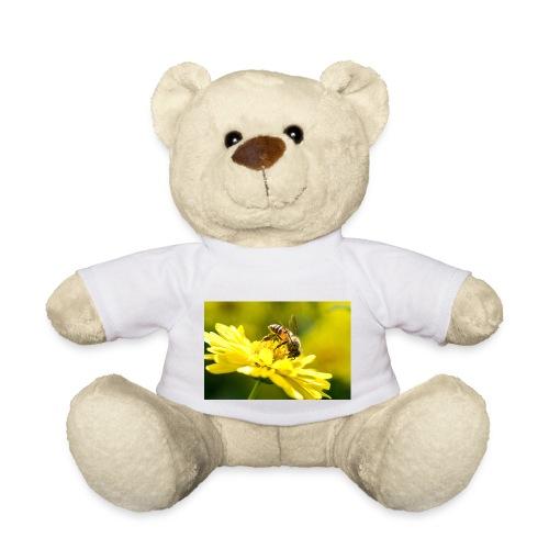 biene - Teddy