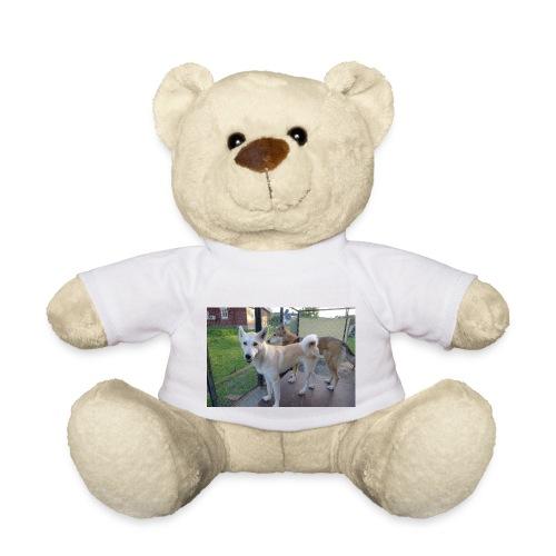 L1000041 - Teddybjørn
