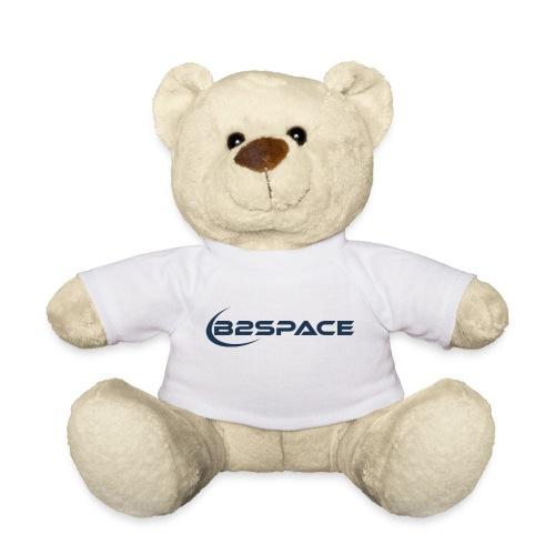 B2Space company - Teddy Bear