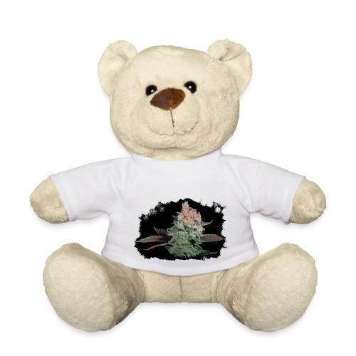 Pflänzchen png - Teddy