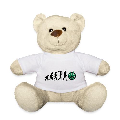Evolution Cannabis - Teddy