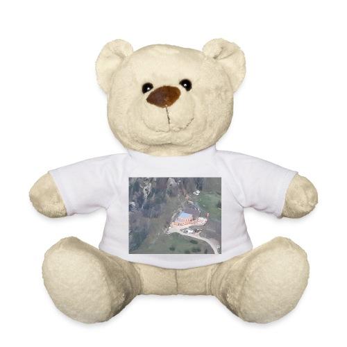 Schobersteinhuette - Teddy