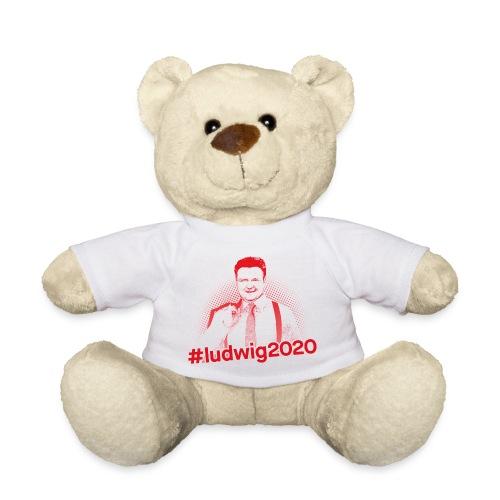 Ludwig 2020 Illustration - Teddy