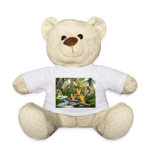 1000181 jpg - Teddy