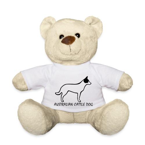Australian Cattle Dog - Teddy