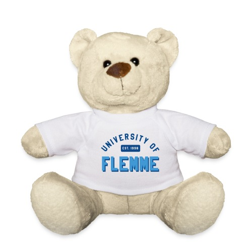 UniversityOfFlemme2 png - Nounours