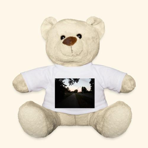 abendliche Landstraße - Teddy