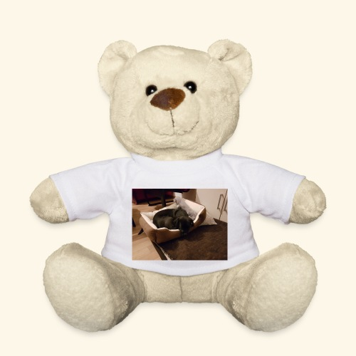 Hund im Hundekörbchen - Teddy
