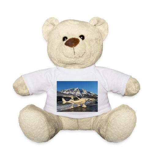 LOGO - Teddy