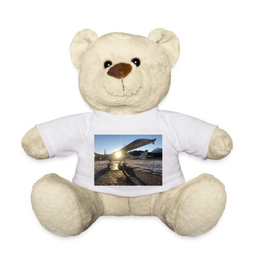 Flugzeug in Niederöblarn - Teddy