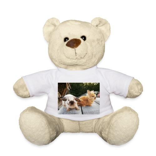 Nouche en Ninou - Teddy