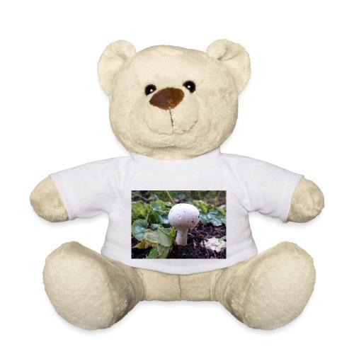Pilz - Teddy