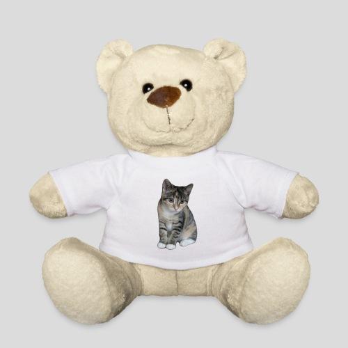 pic 2706 040313 - Teddy