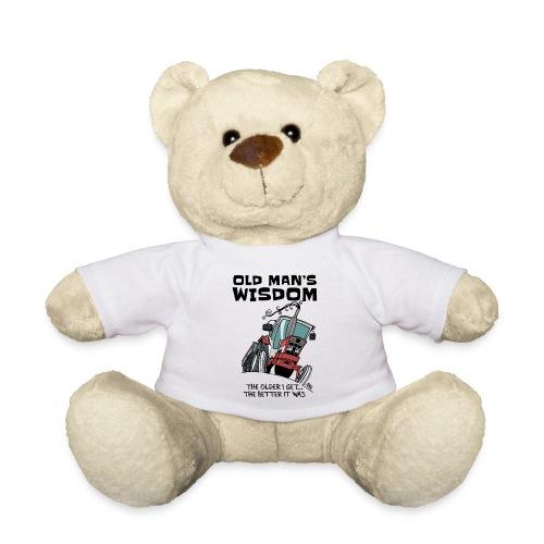 0499 oldmanswisdom IH553 - Teddy