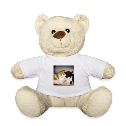 Schlafende Kätzchen - Teddy