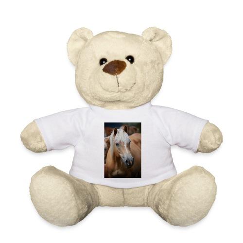 Haflinger - Teddy