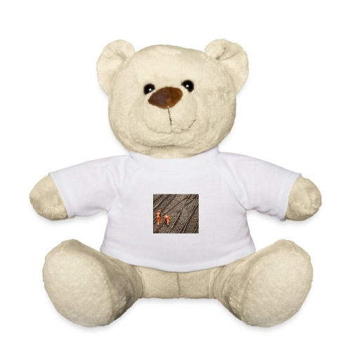 16.9.17 - Teddy