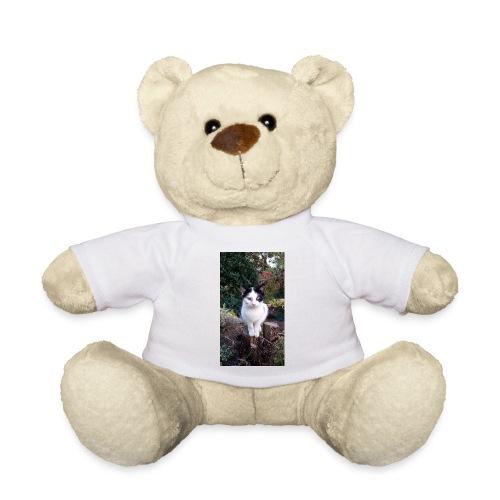 Timmi - Teddy