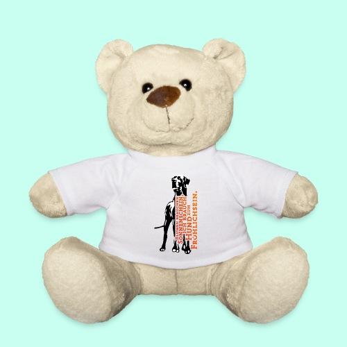 Hundesonnenschein - Teddy