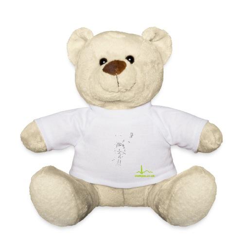 night7 - Teddy Bear
