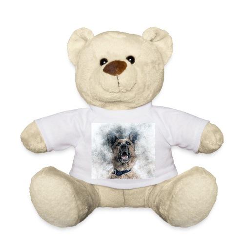 dog hund - Teddy