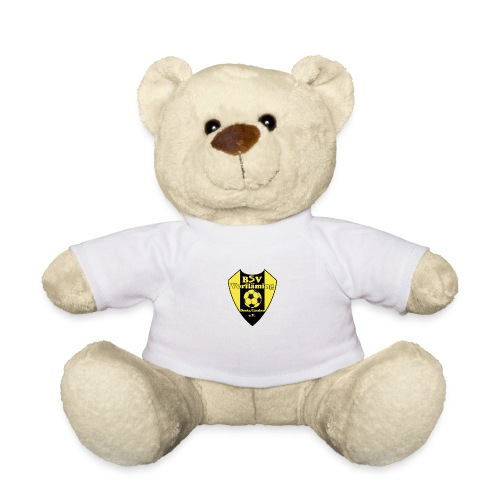bsv logo png - Teddy