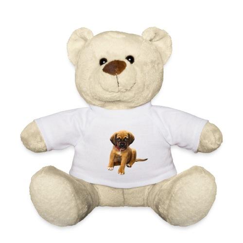 Süsses Haustier Welpe - Teddy