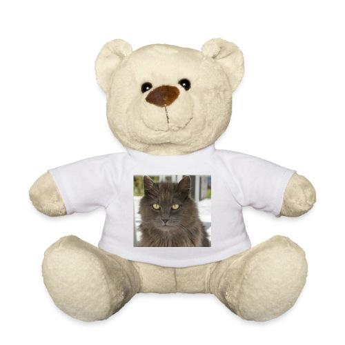 Kater Bärli - Teddy