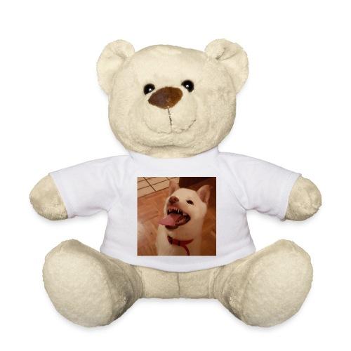 Mein Hund xD - Teddy