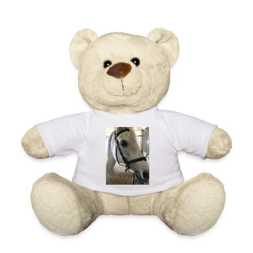 9AF36D46 95C1 4E6C 8DAC 5943A5A0879D - Teddybjørn