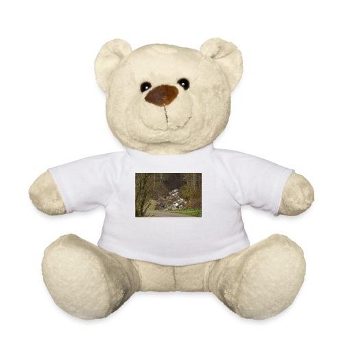 24.10.17 - Teddy