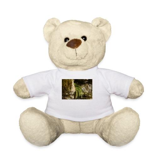 2.11.17 - Teddy