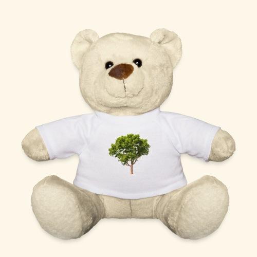 baum2 - Teddy