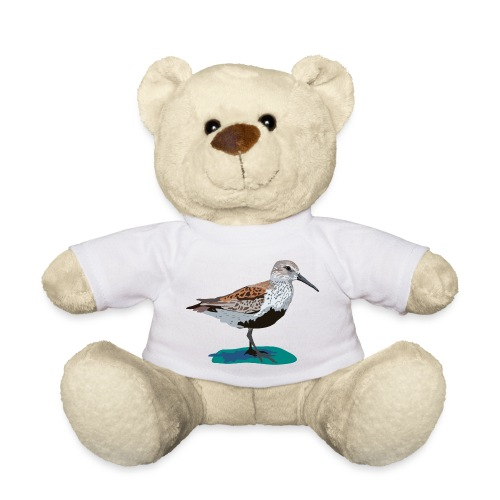 Alpenstrandläufer - Teddy