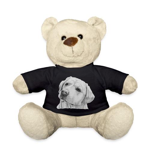 labrador retriever yellow - head - Teddybjørn