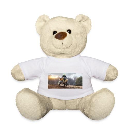 RRS 2141 - Teddy